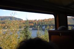 DSD_7788 (Greying_Geezer) Tags: agawacanyon traintour trains railways railroads saultstemarie algoma ontario on canada autumncolours autumn fall colours colors scenic