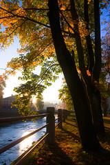 Morning in Trutnov (pa river) (StafbulCZ) Tags: autumn sun mist tree river nikon colours tamron gettyimages 2875 trutnov d700 stafbulcz jaroslavvondracek