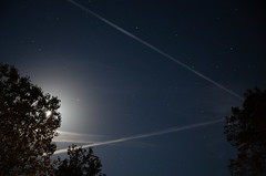Busy Skies (Truebritgal) Tags: longexposure sky moon tree lines night lens stars long exposure skies contrail tripod astro clear nighttime astrophotography moonlight starry 15sec tamronspaf1750mmf28xrdillvc truebritgal