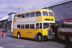 Northern NRB164 Inverness (Guy Arab UF) Tags: bus buses group scottish alexander northern busstation inverness 1953 lowbridge onhire leylandtitan highlandomnibuses townservice pd212 northernalexander walteralexandersons nrb164 dwg920