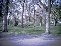 Londra, 22 aprile 2005 (gianluca_braschi) Tags: 2005 uk london nokia britain united great kingdom 6630 april aprile londra nokia6630