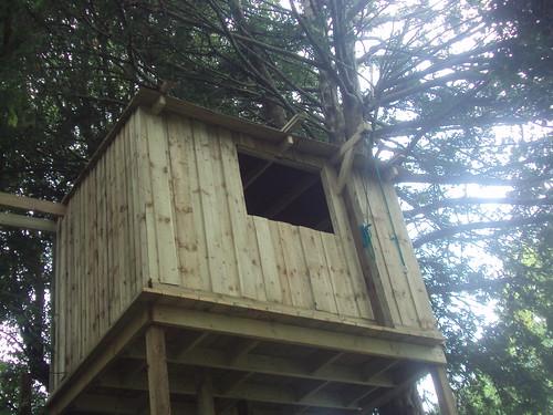 Tree House Prestbury  Image 6