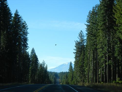 McCloud, California _ 5613