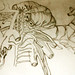 anatomia híbrida