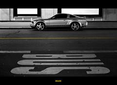 Mustang BUSS 429 (A-lain W-allior A-rtworks) Tags: road park boss light white black paris france bus ford car sport metal grey gris nikon parking voiture route lumiere mustang asphalt parc blanc hdr luxe bitume luxurious sportive grise d300s mygearandme ringexcellence