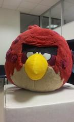 Angry Birds - Big Brother