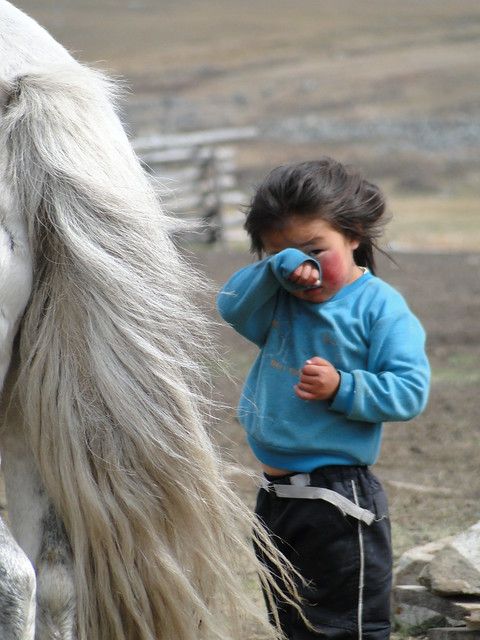 Skittish Horse and Shy Monglian child