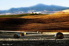 NELLA ''MAGICA VALLE'' ... GIOCANDO CON LA LUCE  - (hdr) (mauro855) Tags: italia siena toscana valdorcia paesaggi hdr panorami 2011 nikond60 abigfave mauronizzi mygearandme magicavalle