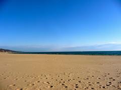 Grand Haven Beach!
