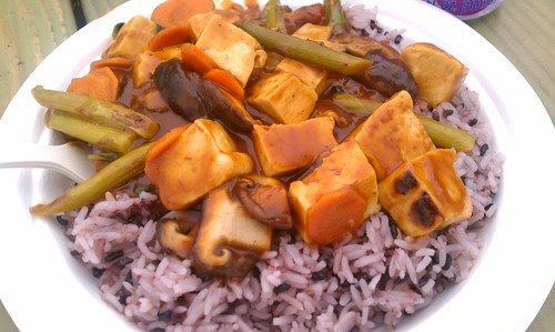 Delta Blues BBQ Tofu from Sneaky Kitty