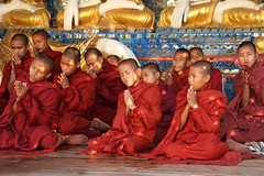 Meditating monks at the Shwedagon pagoda, Yangon, Myanmar (sensaos) Tags: travel people statue religious temple golden pagoda worship asia image buddha shwedagon yangon burma stupa buddhist religion praying great monk buddhism icon monks meditating myanmar dagon asie meditation birma rangoon azie famke azië 2011 earthasia sensaos pagodan