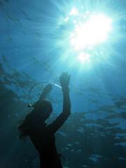 IMG_2407 (d3_plus) Tags: snorkeling freediving izu g12   hirizo   canonpowershotg12 is04