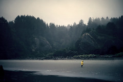Cape scene II (sparth) Tags: leica trees beach fog jaune washington kid haze child foggy olympicpeninsula running september tiny cape olympic washingtonstate peninsula enfant plage brouillard disappointment m9 capedisappointment 2011 leicam9