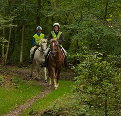 Juliette and Nick on Legend and Matty (Peter J Dean) Tags: horses woodland chilterns buckinghamshire nick matty canoneos20d welsh legend juliette dunsmore sectiond 180550mm thoroughbredxconnemara