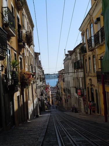 The Lisbon4