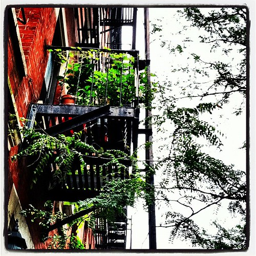 Fire escape garden, 48th St