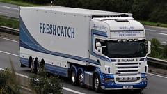 SCO - C&A Anderson Peterhead Scotland >>Fresh Catch<< Scania R 620 TL v (BonsaiTruck) Tags: ca fresh camion catch trucks andersen scania schottland lorries lkw peterhead worldtruck