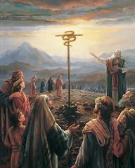 Beliefs History Mormon