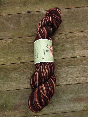 Evermore Studios Sugar Baby Sock Yarn in Chocolate Gradient