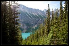 Mountain View, Banff National Park (Josh Merrill Photography) Tags: sun mountain lake canada tree nature water photography nationalpark turquoise josh alberta flare banff lakelouise allrightsreserved merrill banffnationalpark joshmerrillphotography joshmerrillphotographycom roadtoalaska