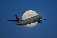 MOONLIGHT MILE 15 (bbw1150) Tags: moon airplane haneda hnd b777 rjtt