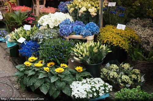 Amsterdam - Singel Flower Market
