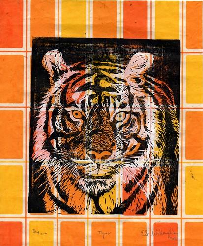 tiger434