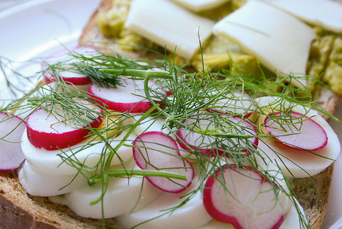 close up of best sandwich