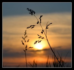 Soul meets soul on lover's lips...... (Levels Nature) Tags: uk sunset england orange sun colour nature colours silhouettes silouette devon woolacombe northdevon topshots abigfave natureselegantshots saariysqualitypictures thebestofmimamorsgroups mygearandme blinkagain