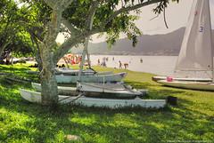 boats at the shore (lily_rosemary) Tags: lake boats florianópolis shore lagoadaconceição