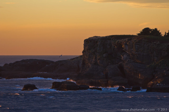 Island off Cape Flattery