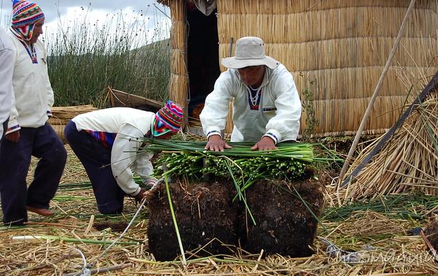 Puno - Peru - Image00004