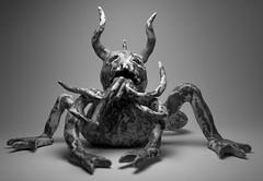 hellfrog (macro_zorki) Tags: light white black art studio iso200 pentax 28mm hell frog f8 k10d