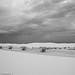 White Sands New Mexico-5.jpg