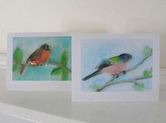 Robin and painted bunting cards (mbrichmond) Tags: bluejay chickadee kingfisher owl flicker vireo yellowbirds birdprints assortedbirds maryrichmonddesign birdcards naturecards songbirdcards frommywatercolors