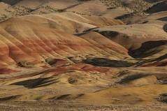 Orygun Road Trip58 (S Hassler) Tags: oregon paintedhills johnday johndaynationalpark