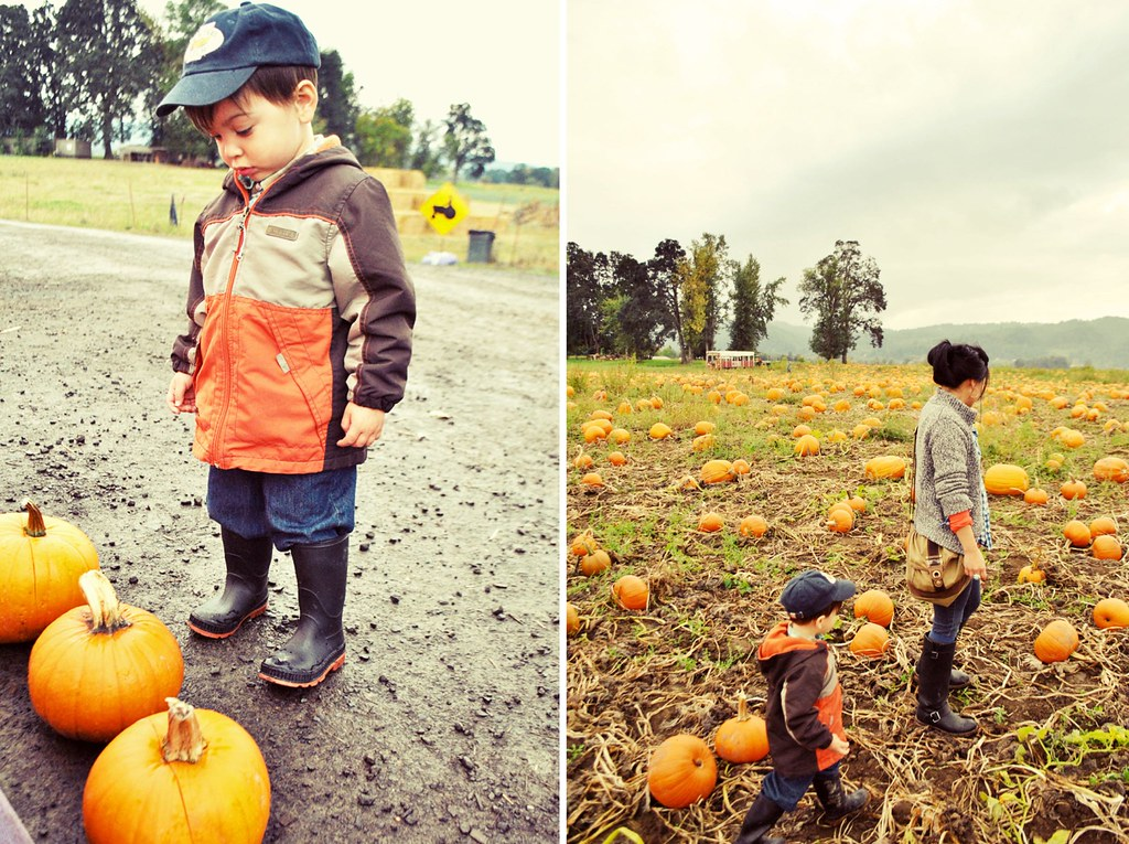 Lifestyle - Fall - Pumpkin Patch