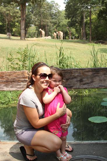 NC Zoo #6