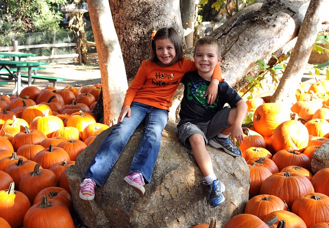 Irvine Park Pumpkin Patch 2011