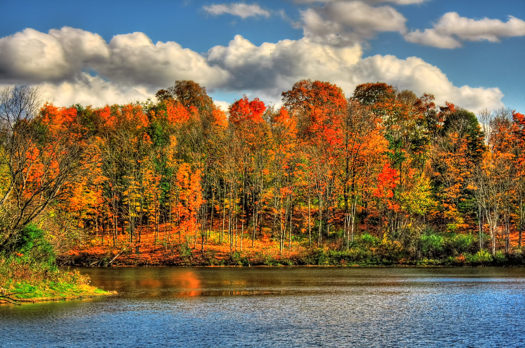 Troy NY - Oakwood Meadows Frear Park 01