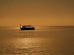 Dhoni in a copper-like sunset (presbi) Tags: sunset sea tramonto mare maldives maldive dhoni thudufushi doublyniceshot doubleniceshot tripleniceshot mygearandme mygearandmepremium mygearandmebronze mygearandmesilver mygearandmegold mygearandmeplatinum ringexcellence blinkagain bestofblinkwinners artistoftheyearlevel3 aboveandbeyondlevel4 aboveandbeyondlevel1 4timesasnice 6timesasnice 5timesasnice 7timesasnice aboveandbeyondlevel2 aboveandbeyondlevel3