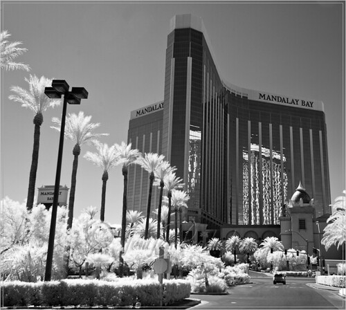 Las Vegas-PSW Photowalk - Mandalay Bay Hotel (black and white infrared) - taken with a Nikon D200 IR-converted camera and Nikon 18-200 VR lens