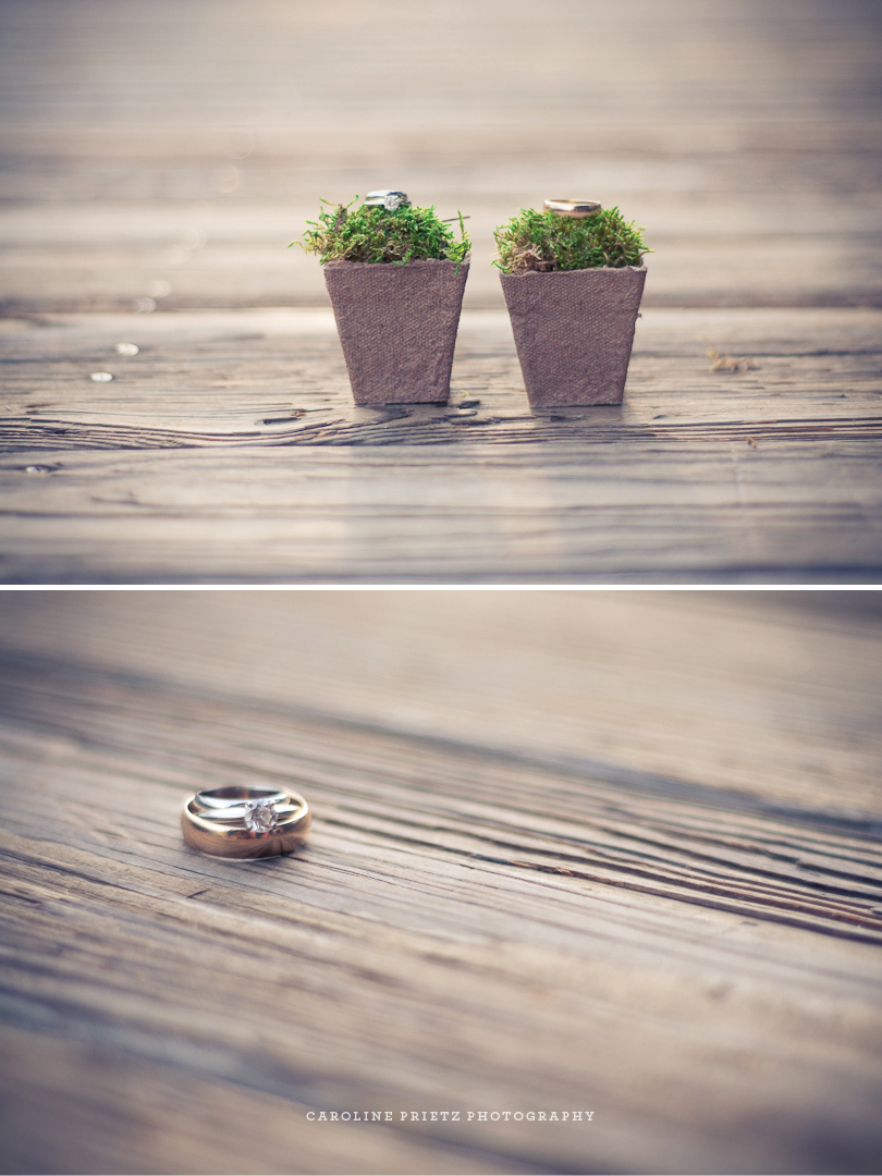 AshleyBrian_rings