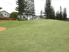 WAIKELE COUNTRY CLUB 145