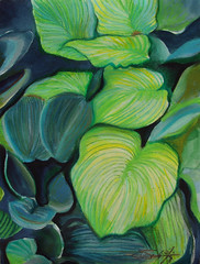 """Green Leaves • <a style=""""font-size:0.8em;"""" href=""""https://www.flickr.com/photos/78624443@N00/6153457091/"""" target=""""_blank"""">View on Flickr</a>"""