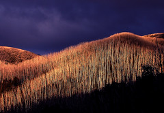 A.B.S. (phunnyfotos) Tags: light sunset sky mountain snow weather clouds canon spring australia victoria alpine canonpowershots2is fallscreek canonpowershot alpinenationalpark northeastvictoria bogonghighplains kiewavalley phunnyfotos