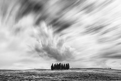 cypresses and clouds (icola tramari) Tags: longexposure italy nature alberi clouds italia nuvole natura cielo tuscany cypress toscana valdorcia cypresses bianconero biancoenero cipressi cipresso monocromatico lungaesposizione nicolatramarin