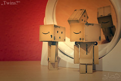 Twins? (Oliver Totzke) Tags: macro ex toy dc nikon sigma days 365 f28 1850 danbo hsm revoltech danboard d7000
