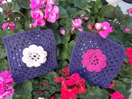 Luna's Flower Squares. Thank you for the beautiful Squares Hieke!