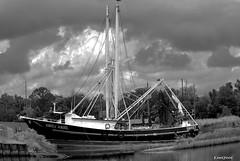 EMILY ARIEL B/W (t.rex7000) Tags: bw ariel emily alabama shrimpboat bayoulabatre trex7000